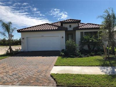 Naples Single Family Home For Sale: 4284 Raffia Palm Cir