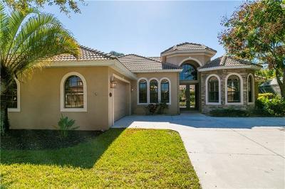 Indigo Lakes Single Family Home For Sale: 14784 Indigo Lakes Cir