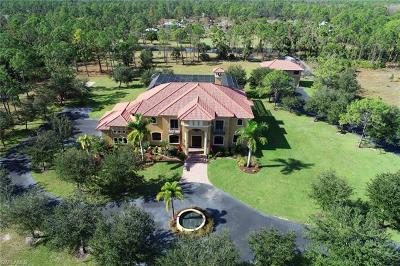 Naples, Marco Island Single Family Home For Sale: 2821 4th St NE