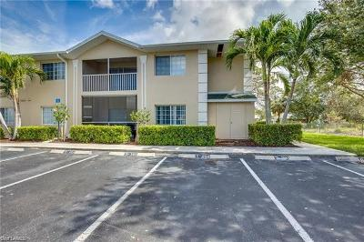 Bonita Springs Rental For Rent: 27111 Matheson Ave #204