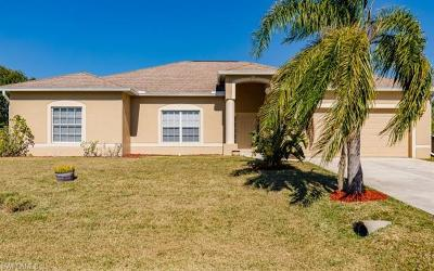 Cape Coral Single Family Home For Sale: 1123 SW 42nd St