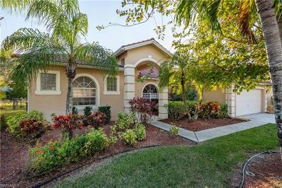 Collier County Single Family Home For Sale: 3438 Allegheny Ct