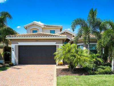 Riverstone Single Family Home For Sale: 2854 Cinnamon Bay Cir