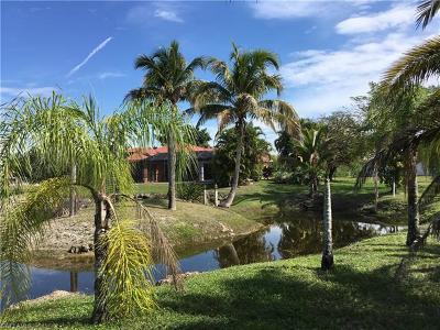 Bell Villa Single Family Home For Sale: 12304 Avida Ln