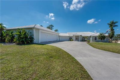 North Fort Myers Single Family Home For Sale: 18683 Baseleg Ave