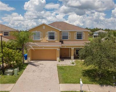 Lehigh Acres Single Family Home For Sale: 11065 River Trent Ct