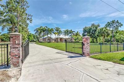 Fort Myers Single Family Home For Sale: 6980 Greystone Ln