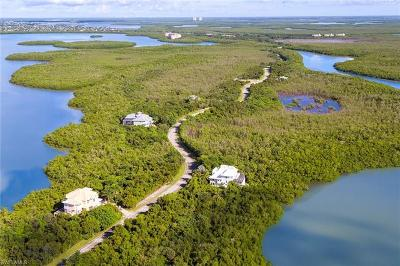 Marco Island Residential Lots & Land For Sale: 768 Whiskey Creek Dr