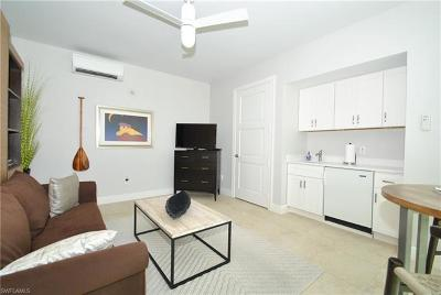 Naples FL Condo/Townhouse For Sale: $179,000