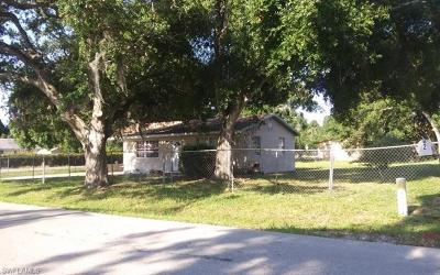 Fort Myers Single Family Home For Sale: 1044 Luray Ave