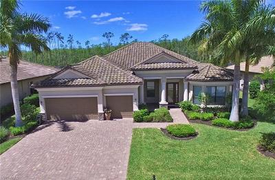 Estero Single Family Home For Sale: 20086 Eagle Stone Dr