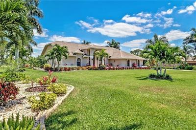 Estero Single Family Home For Sale: 19163 Vintage Trace Cir