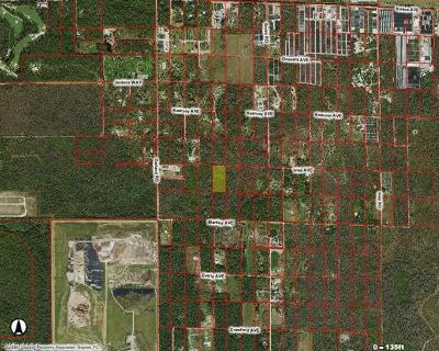 Naples Residential Lots & Land For Sale: Ivisa Ave