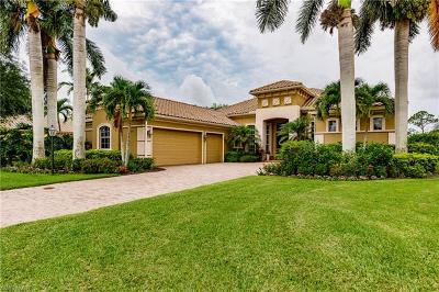 Bonita Springs  Single Family Home For Sale: 28585 Via D Arreza Dr