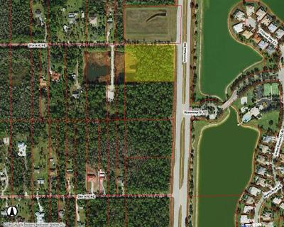 Naples Residential Lots & Land For Sale: Immokalee Rd