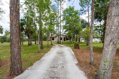 Naples Single Family Home For Sale: 985 Snake Rd