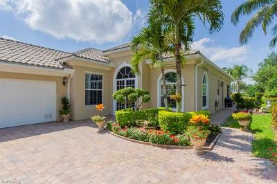 Single Family Home For Sale: 7240 Carducci Ct