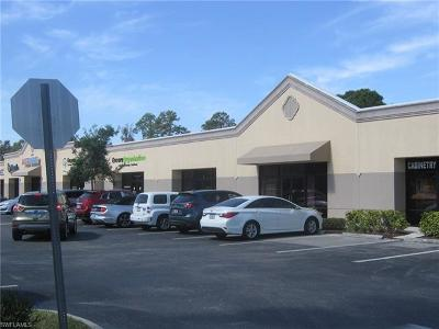 Bonita Springs Commercial For Sale: 28440 Old 41 Rd #9