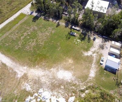 Fort Myers Residential Lots & Land For Sale: 17130 Wobegon Dr