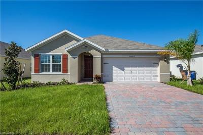 Lehigh Acres Single Family Home For Sale: 10284 Silver Pond Ln