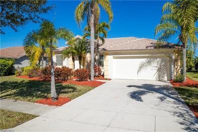 Naples Single Family Home For Sale: 824 Grand Rapids Blvd