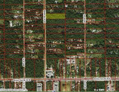 Collier County Residential Lots & Land For Sale: Wilson Blvd N