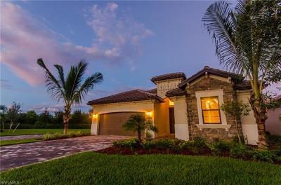 Naples Single Family Home For Sale: 9234 Veneto Pl