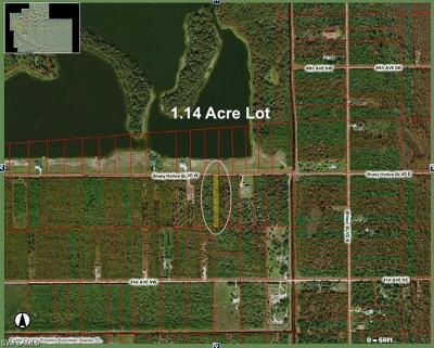 Naples Residential Lots & Land For Sale: 240 Shady Hollow Blvd W