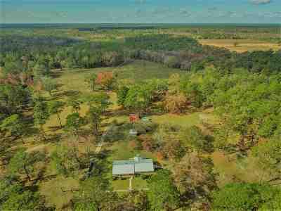 Crawfordville Single Family Home For Sale: 624 Wakulla Springs Road
