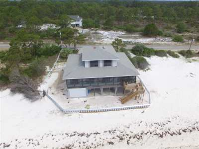 Franklin County Single Family Home For Sale: 1033 Gulf Shore Blvd
