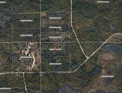 Residential Lots & Land For Sale: 20 Acres Backwoods Jackson Bluff Road