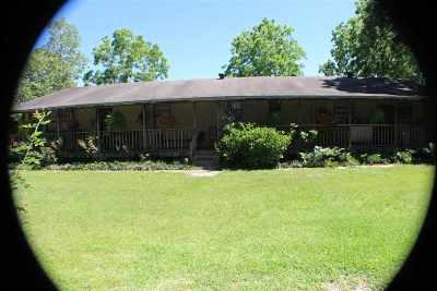 Monticello, Tallahassee, Quincy, Havana, Wacissa, Lamont Single Family Home For Sale: 2900 Oak Tree Lane