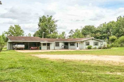 tallahassee Single Family Home For Sale: 8601 Hall 'n Barnes Lane