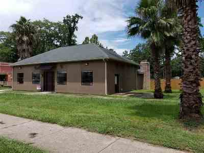 Tallahassee Single Family Home For Sale: 102 Dixie Dr