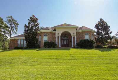 Tallahassee Single Family Home For Sale: 9197 Shoal Creek Dr