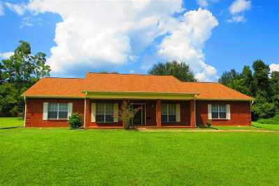 Tallahassee Single Family Home New: 11120 Tung Grove Road