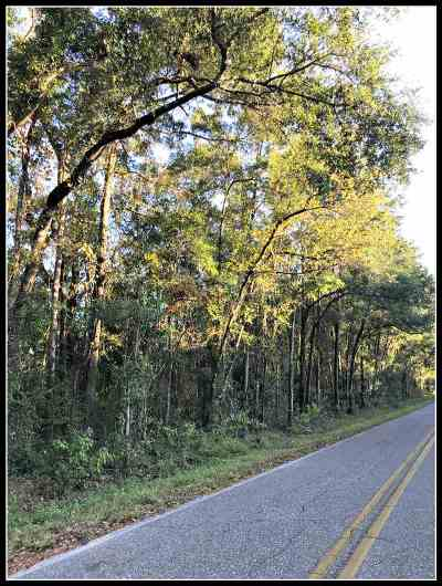 Monticello, Tallahassee, Quincy, Havana, Wacissa, Lamont Residential Lots & Land For Sale: Taff Road