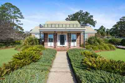 Tallahassee Single Family Home For Sale: 1202 E Park Ave