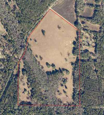 Monticello, Tallahassee, Quincy, Havana, Wacissa, Lamont Residential Lots & Land For Sale: Xxx Miccosukee Road