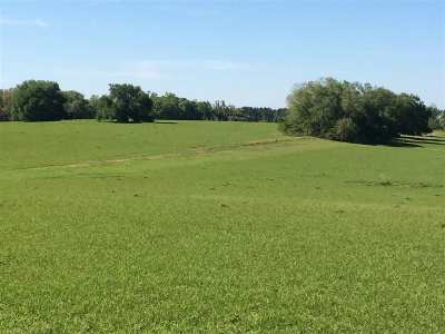 Lloyd, Tallahassee, Monticello, Lamont, Quincy, Havana, Wacissa, Crawfordville, Woodville Residential Lots & Land For Sale: 10500 Rose Road