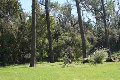 Tallahassee FL Single Family Home New: $265,000