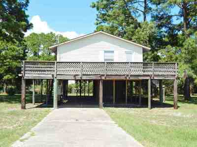 Franklin County Single Family Home For Sale: 1352 Alligator Drive