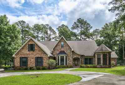 Leon County Single Family Home For Sale: 5976 Ansel Ferral Road