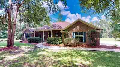 Tallahassee Single Family Home For Sale: 9101 Old Chemonie Road