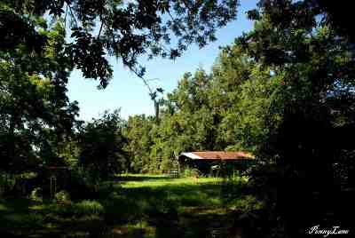 Monticello, Tallahassee, Quincy, Havana, Wacissa, Lamont Residential Lots & Land For Sale: 3650 Chaires Cross Rd