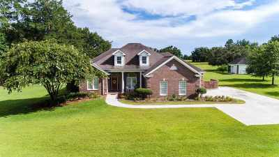 Lloyd, Tallahassee, Monticello, Lamont, Quincy, Havana, Wacissa, Crawfordville, Woodville Single Family Home New: 25 Tallmont Road