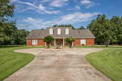 Tallahassee Single Family Home New: 4028 Logans Run