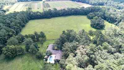 Jefferson County Single Family Home For Sale: 1156 Waukeenah Highway