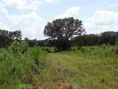 Lloyd, Tallahassee, Monticello, Lamont, Quincy, Havana, Wacissa, Crawfordville, Woodville Residential Lots & Land For Sale: Ward Road