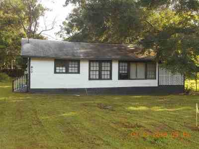 tallahassee Single Family Home For Sale: 810 Greenleaf